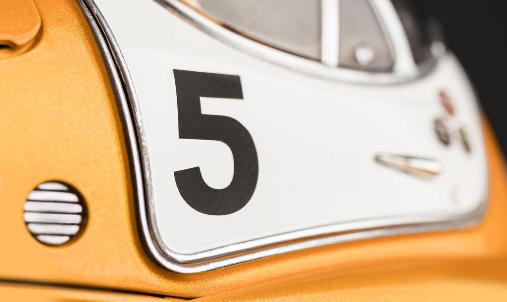 Close-up-Racing-Flea-No5-2785x1659px.jpg